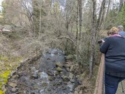 Volunteer Photography Training - Wolf Creek Trail - Northstar Mining Museum - Bridge - Shutter Speed instruction - Silky Water - Yasha & Rick - Copyright 2020 HeartWork Photography