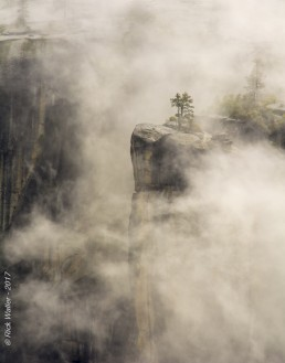 Yosemite Valley Fog - HeartWork Photography Accessible Nature Outings - Copyright 2017 Rick Waller